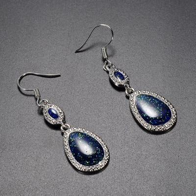 Silver 925 Dangle Drop Earrings Ear Hook